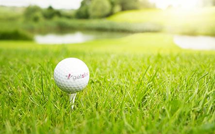 getsix® 3rd Annual Golf Trophy 2014