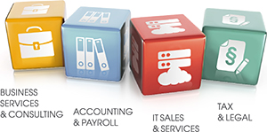 Business Services & Consulting, Accounting & Payroll, IT Sales & Services, Tax & Legal