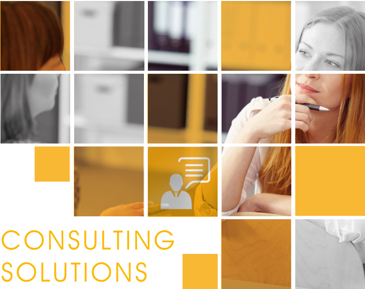 Consulting Solutions getsix®